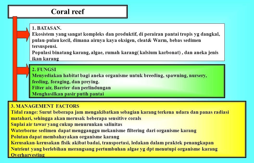 Coral reef 1. BATASAN.