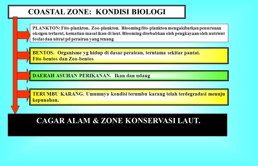 COASTAL ZONE: KONDISI BIOLOGI CAGAR ALAM & ZONE KONSERVASI LAUT.