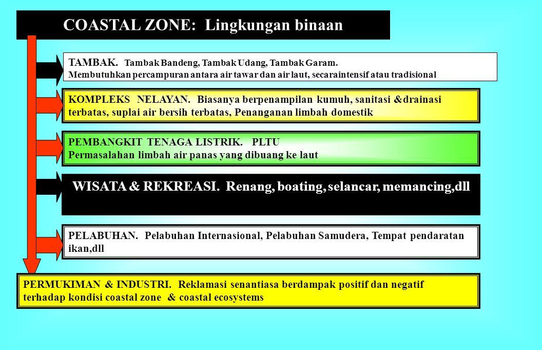 COASTAL ZONE: Lingkungan binaan