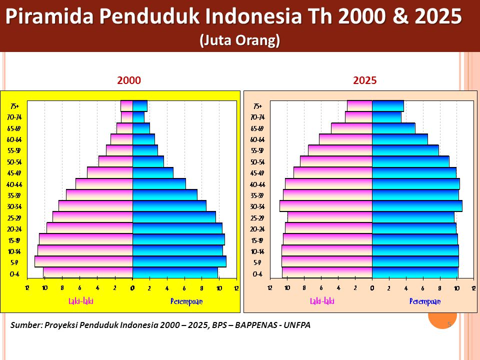 Piramida Penduduk Indonesia Th 2000 & 2025