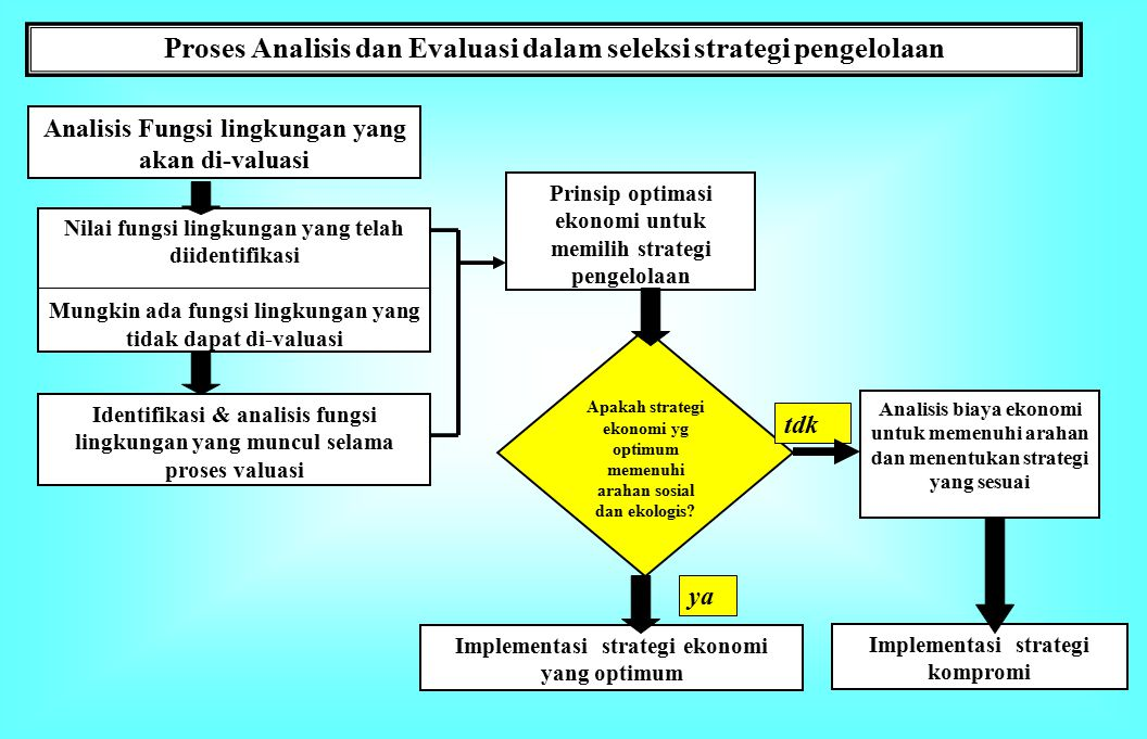 Proses Analisis dan Evaluasi dalam seleksi strategi pengelolaan
