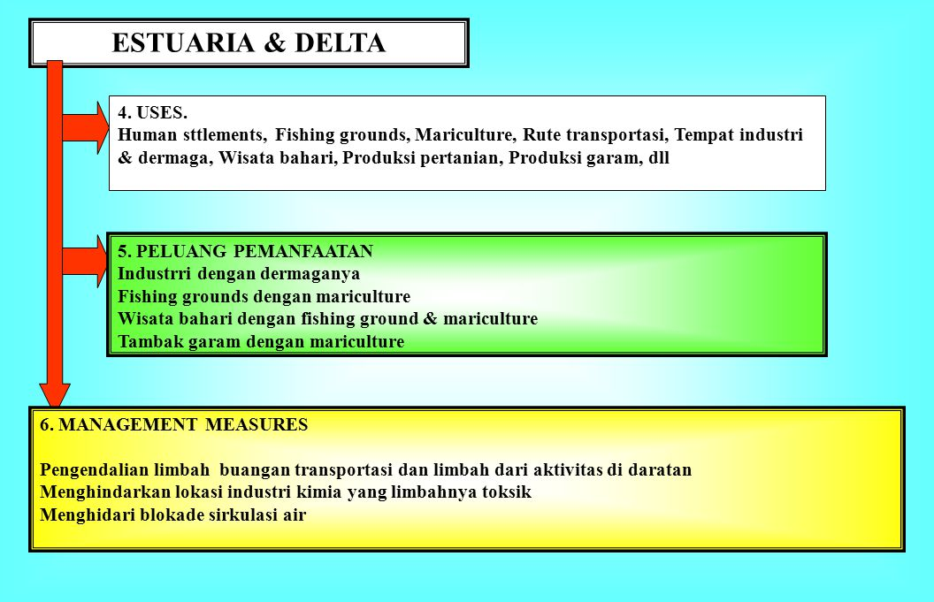 ESTUARIA & DELTA 4. USES.