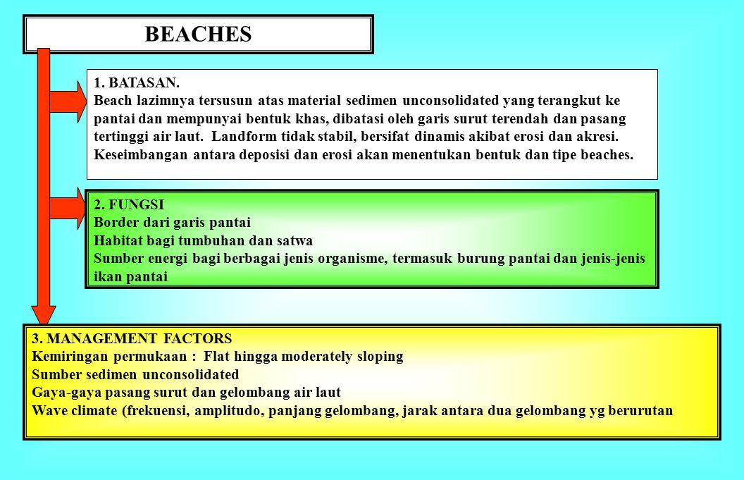 BEACHES 1. BATASAN.