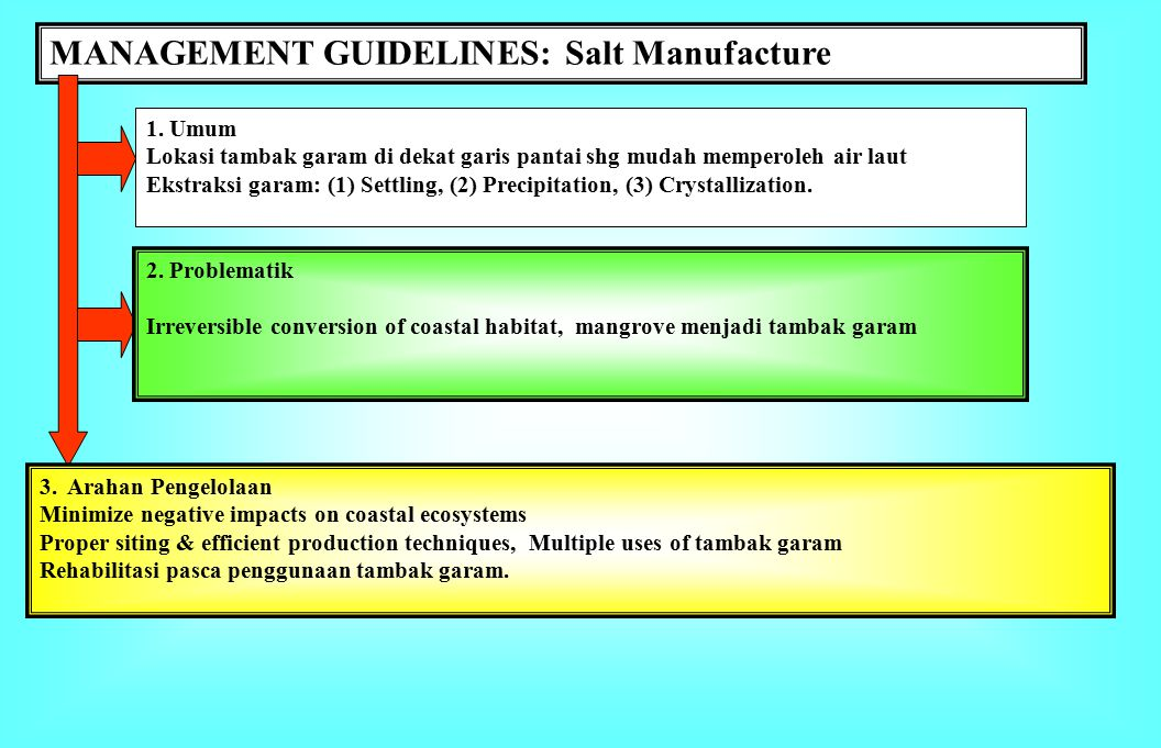 MANAGEMENT GUIDELINES: Salt Manufacture