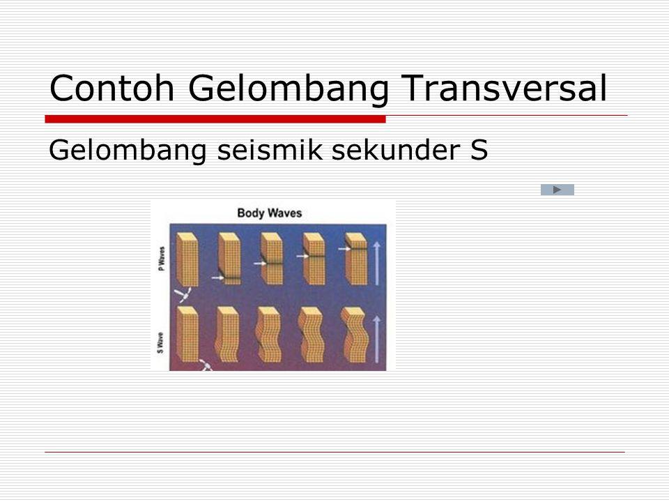 Contoh Gelombang Transversal
