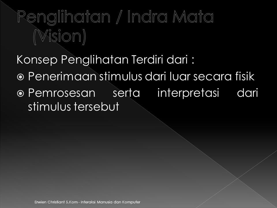 Penglihatan / Indra Mata (Vision)