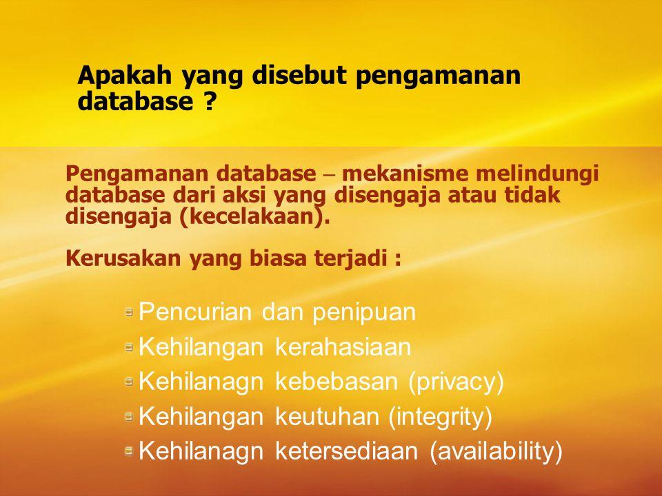 Apakah yang disebut pengamanan database