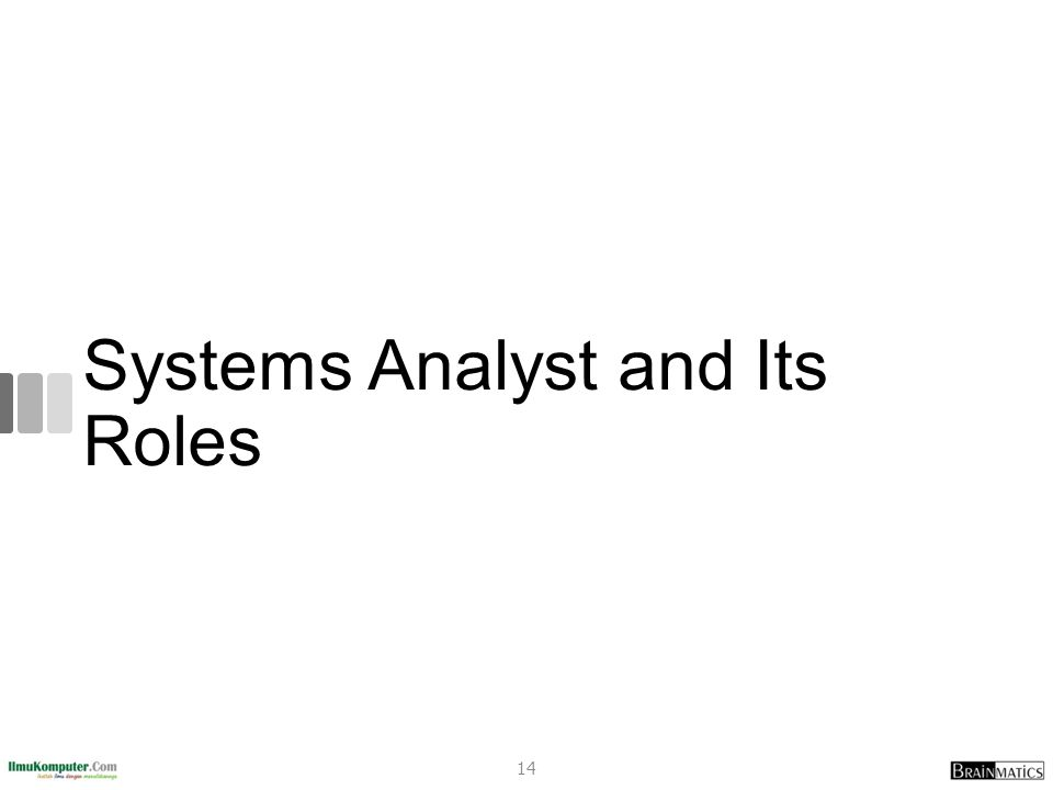 Systems Analyst and Its Roles