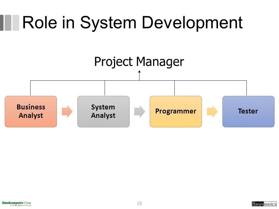 Role in System Development