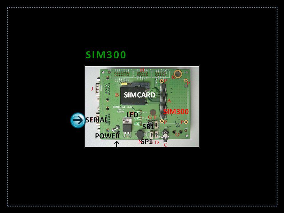 SIM300