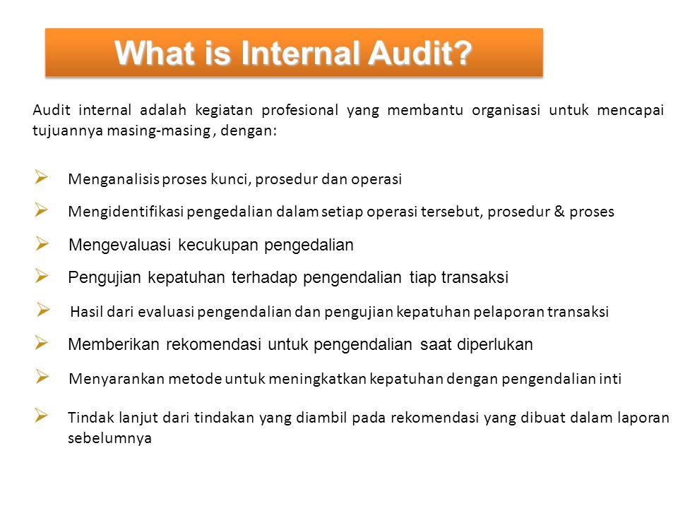 What is Internal Audit Audit internal adalah kegiatan profesional yang membantu organisasi untuk mencapai tujuannya masing-masing , dengan: