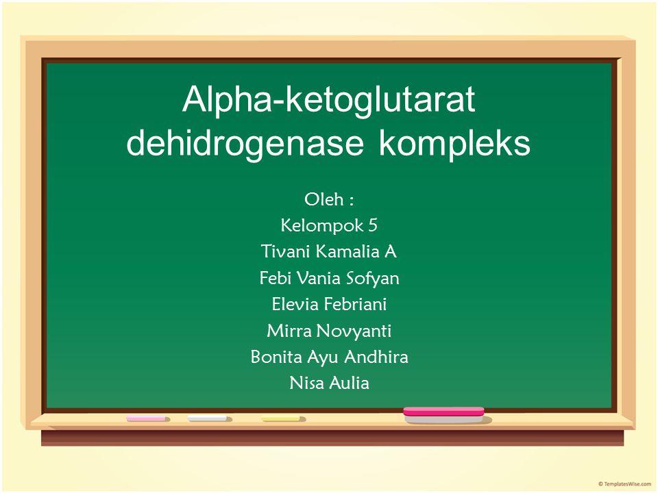Alpha-ketoglutarat dehidrogenase kompleks
