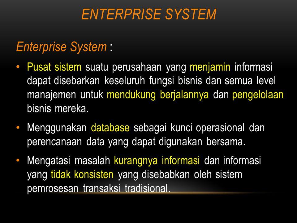 ENTERPRISE SYSTEM Enterprise System :