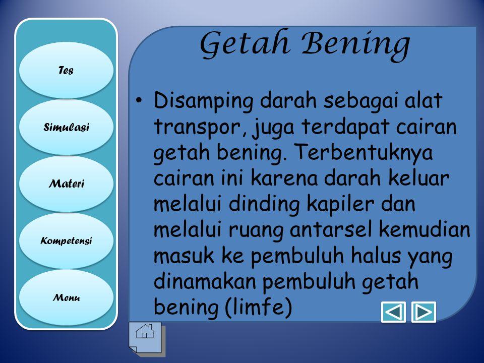 Getah Bening Tes.