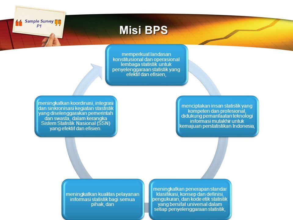 Misi BPS memperkuat landasan konstitusional dan operasional lembaga statistik untuk penyelenggaraan statistik yang efektif dan efisien,