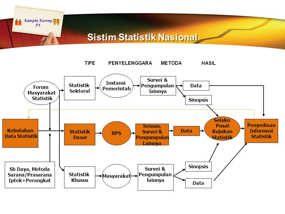 Sistim Statistik Nasional