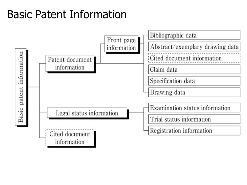 Basic Patent Information