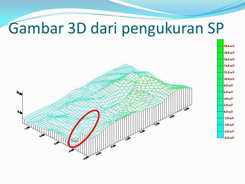 Gambar 3D dari pengukuran SP