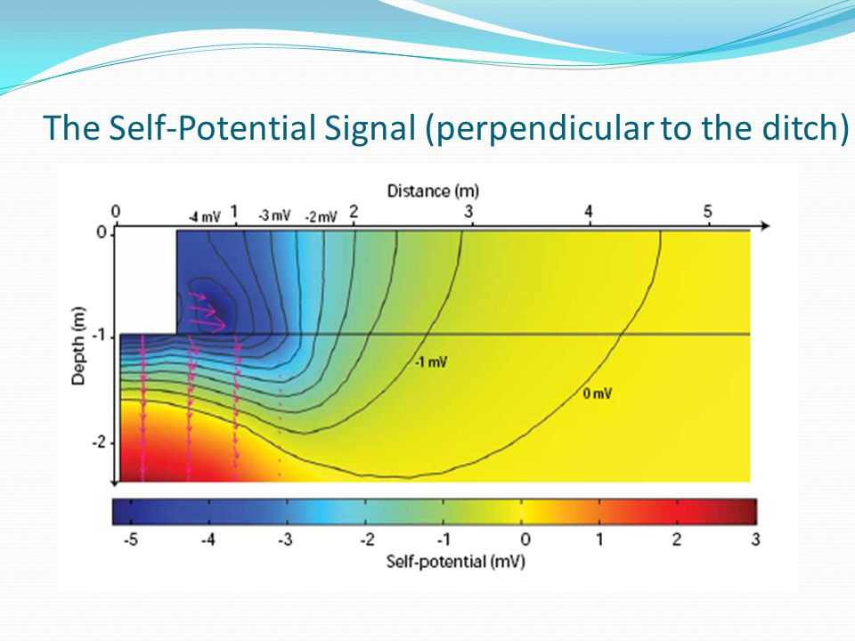 The Self-Potential Signal (perpendicular to the ditch)
