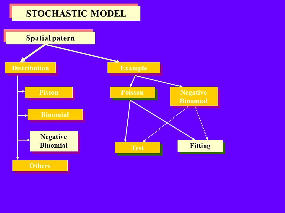 STOCHASTIC MODEL Spatial patern Distribution Example Pisson Poisson