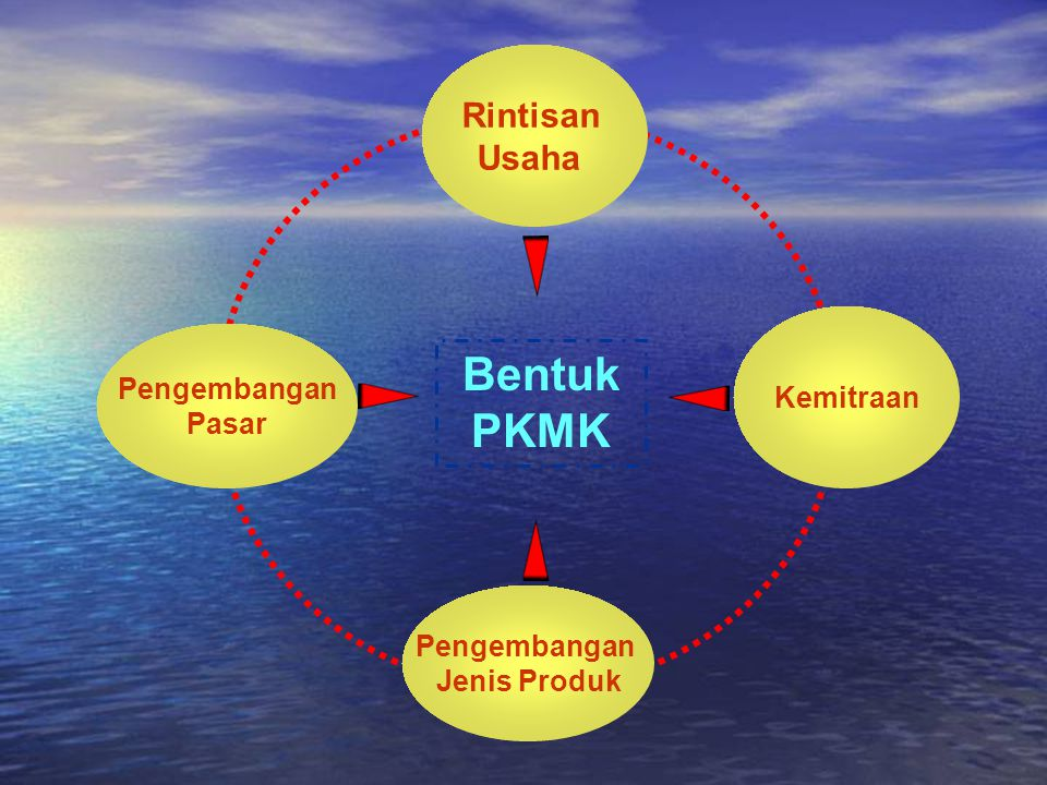 Bentuk PKMK Rintisan Usaha Kemitraan Pengembangan Pasar Pengembangan