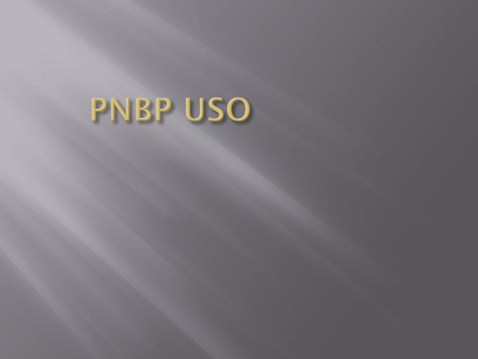 PNBP USO