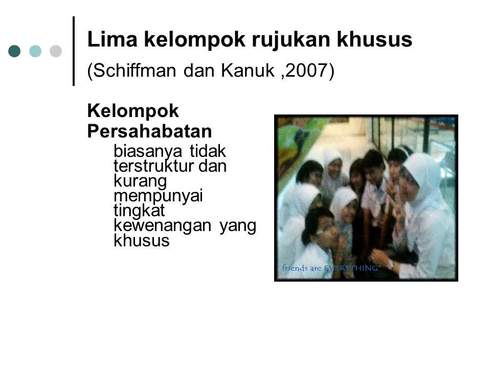 Lima kelompok rujukan khusus (Schiffman dan Kanuk ,2007)