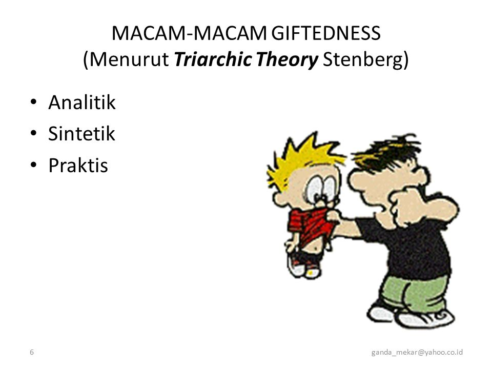 MACAM-MACAM GIFTEDNESS (Menurut Triarchic Theory Stenberg)