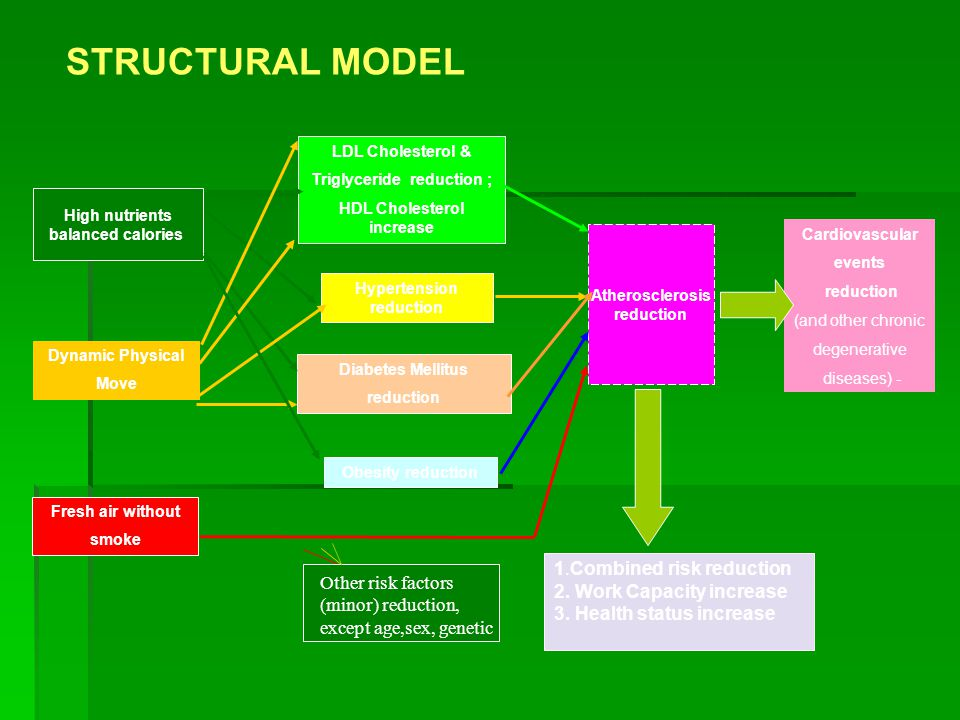 STRUCTURAL MODEL 1.Combined risk reduction