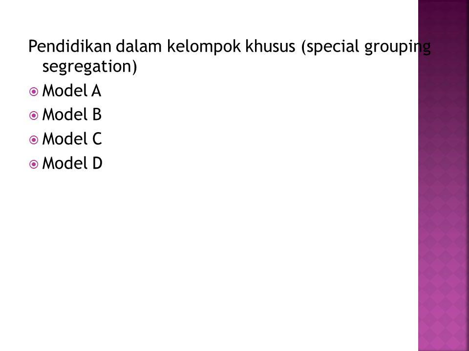 Pendidikan dalam kelompok khusus (special grouping segregation)