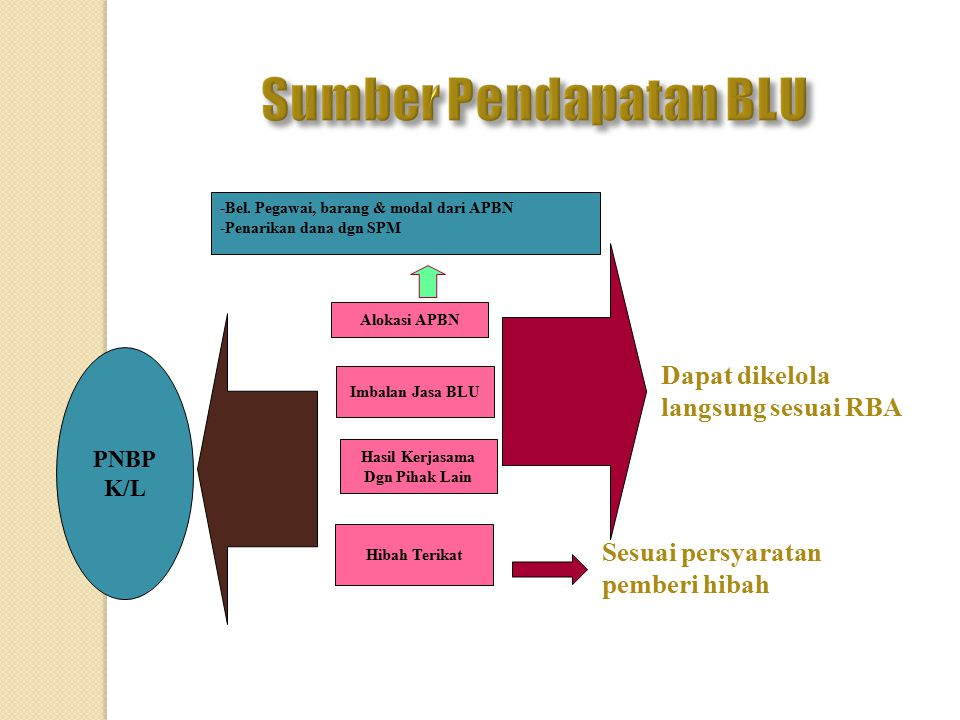 Sumber Pendapatan BLU Dapat dikelola langsung sesuai RBA