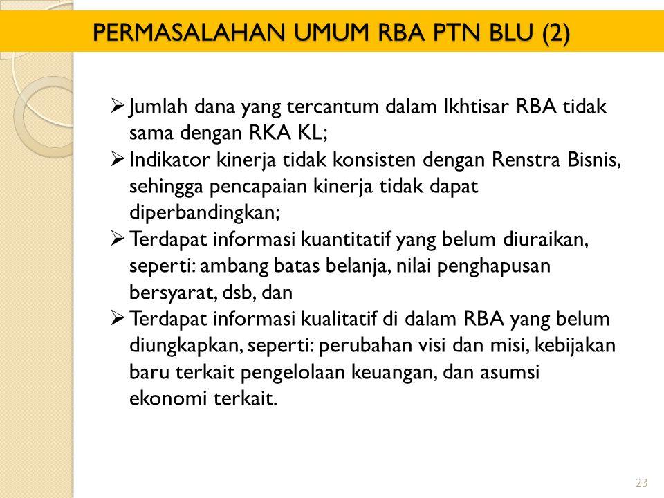 PERMASALAHAN UMUM RBA PTN BLU (2)