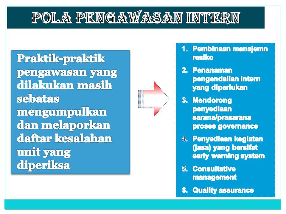 Pola Pengawasan Intern