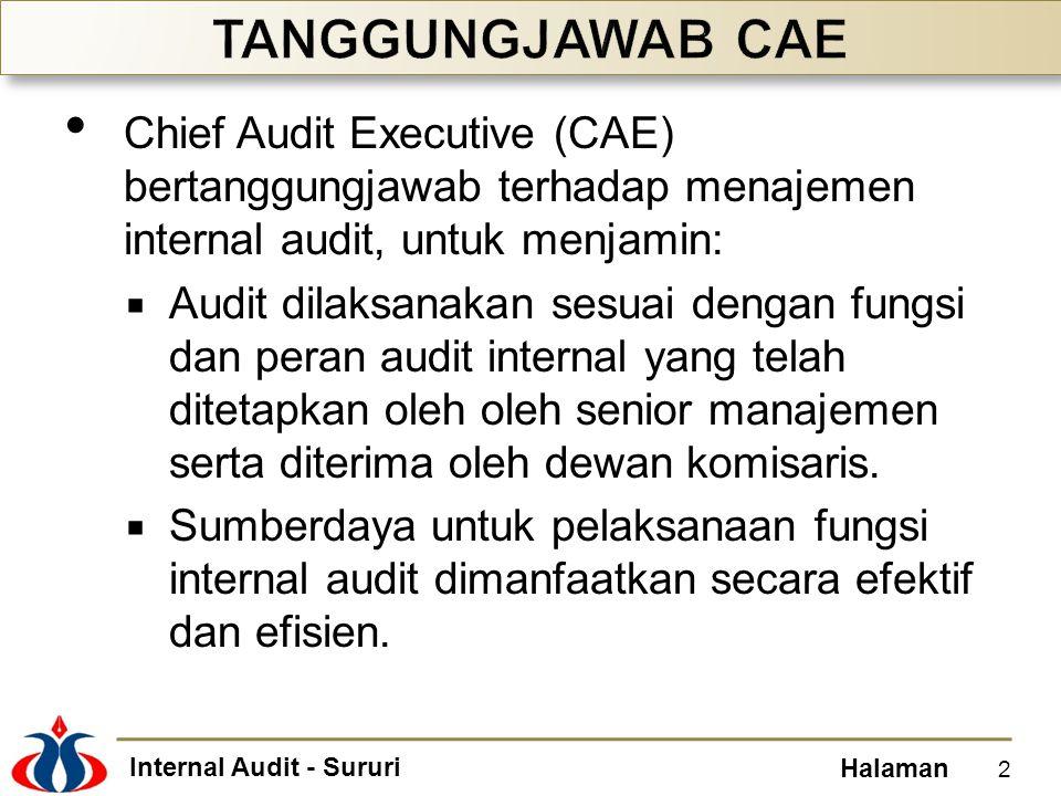 TANGGUNGJAWAB CAE Chief Audit Executive (CAE) bertanggungjawab terhadap menajemen internal audit, untuk menjamin: