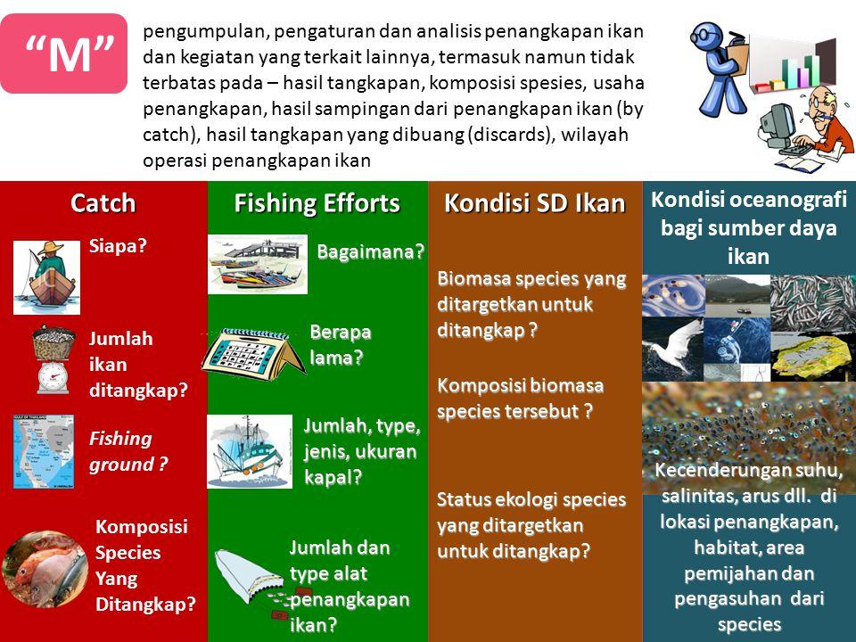 Kondisi oceanografi bagi sumber daya ikan