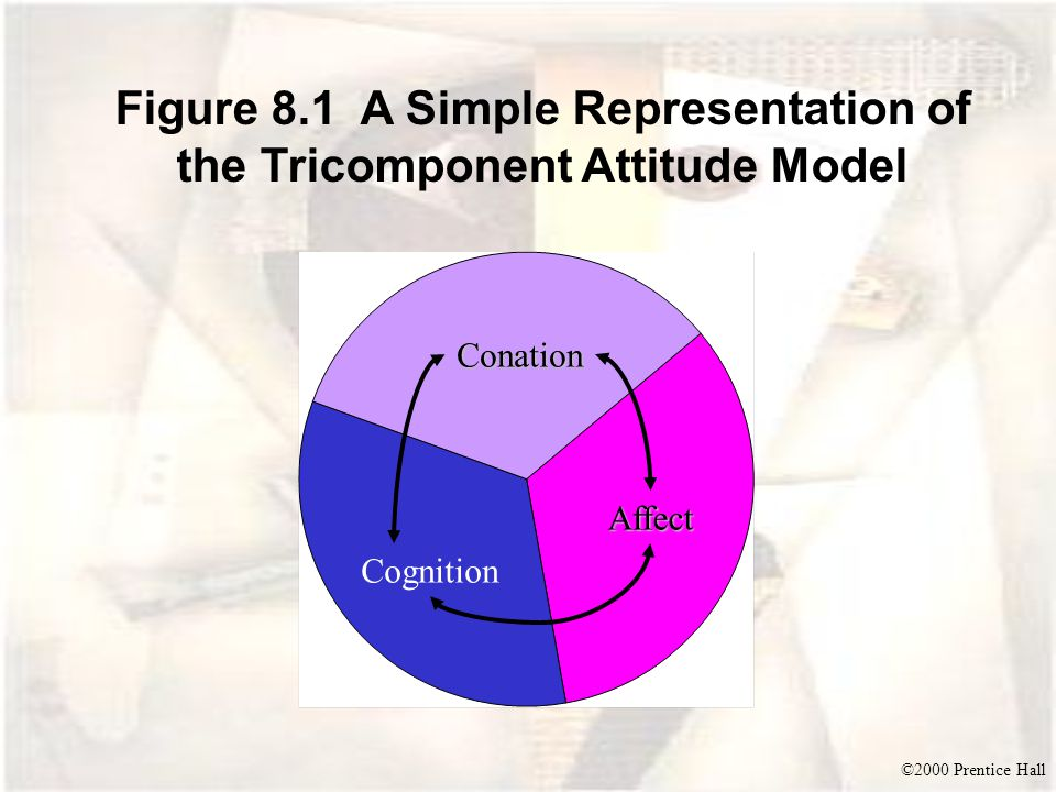 Figure 8.1 A Simple Representation of the Tricomponent Attitude Model