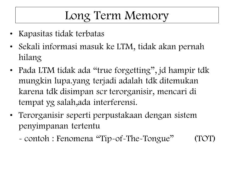 Long Term Memory Kapasitas tidak terbatas