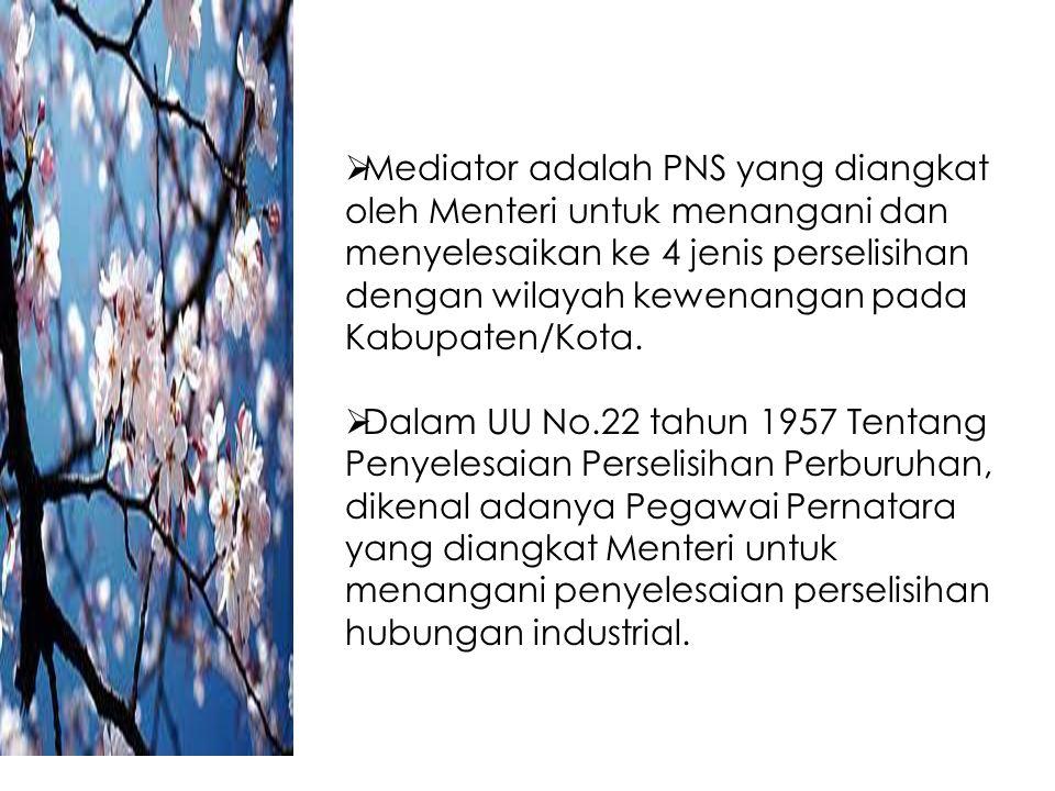 Mediator adalah PNS yang diangkat oleh Menteri untuk menangani dan menyelesaikan ke 4 jenis perselisihan dengan wilayah kewenangan pada Kabupaten/Kota.