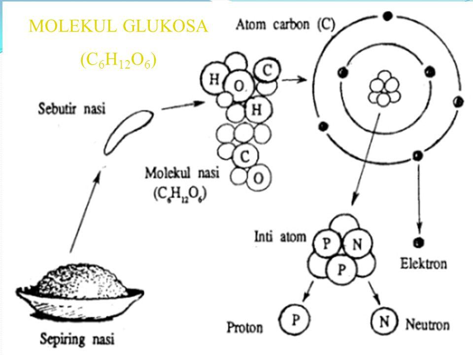 MOLEKUL GLUKOSA (C6H12O6)