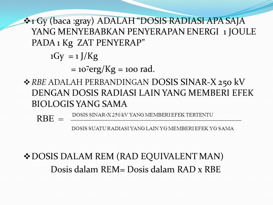 DOSIS DALAM REM (RAD EQUIVALENT MAN)