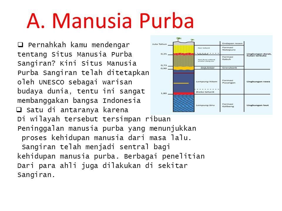 A. Manusia Purba Pernahkah kamu mendengar tentang Situs Manusia Purba