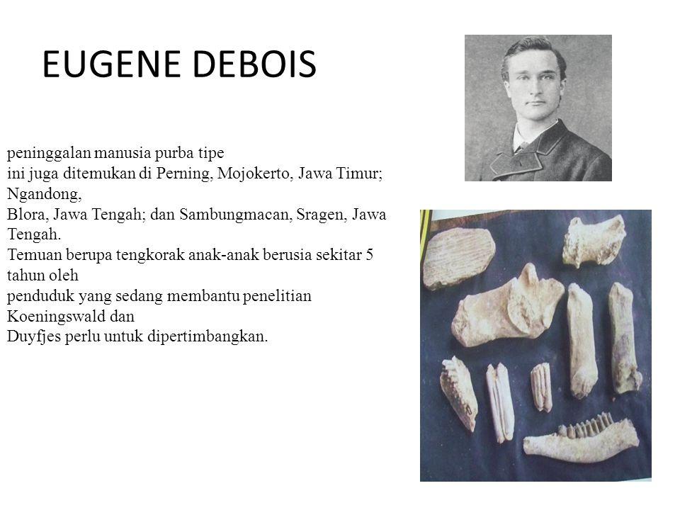 EUGENE DEBOIS peninggalan manusia purba tipe