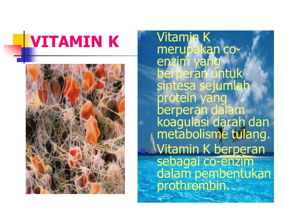 VITAMIN K Vitamin K merupakan co-enzim yang berperan untuk sintesa sejumlah protein yang berperan dalam koagulasi darah dan metabolisme tulang.