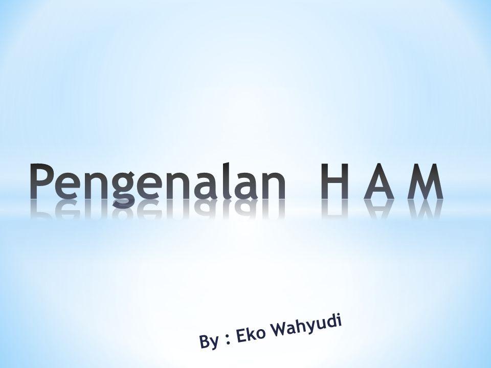 Pengenalan H A M By : Eko Wahyudi