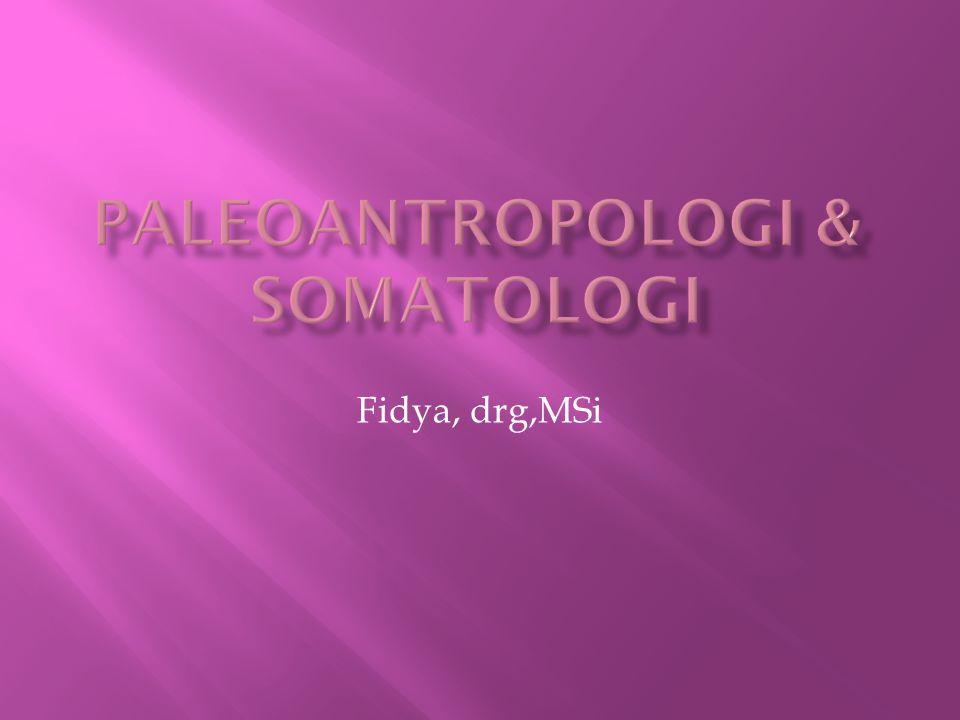 Paleoantropologi & Somatologi