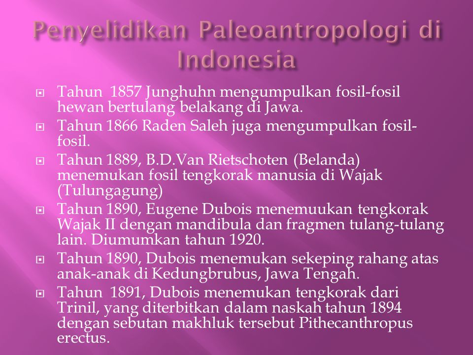 Penyelidikan Paleoantropologi di Indonesia