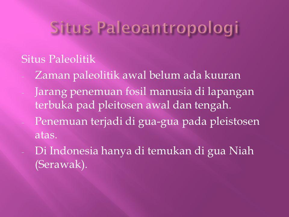 Situs Paleoantropologi