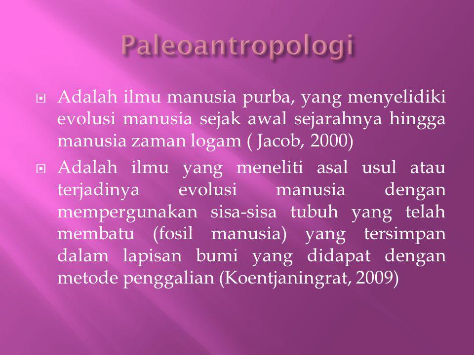 Paleoantropologi Adalah ilmu manusia purba, yang menyelidiki evolusi manusia sejak awal sejarahnya hingga manusia zaman logam ( Jacob, 2000)