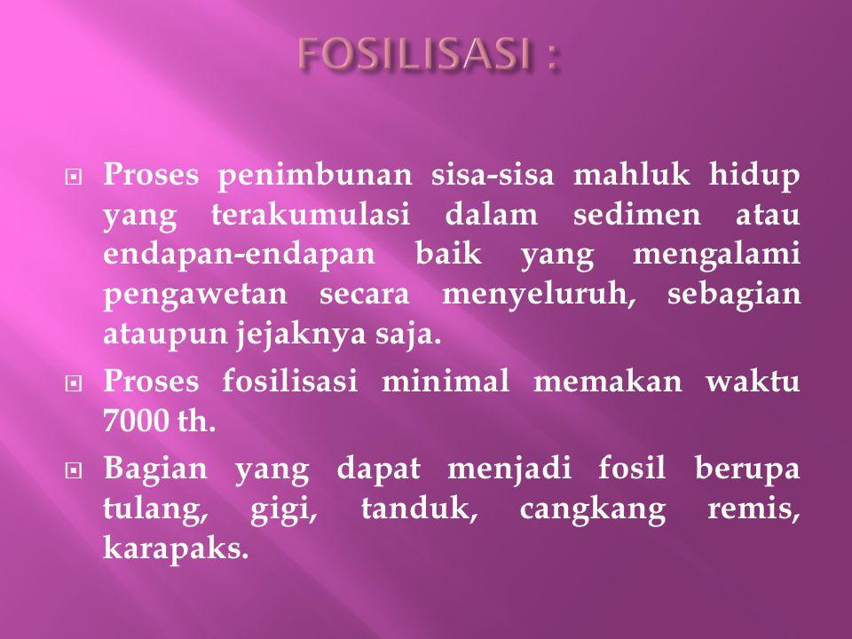 FOSILISASI :
