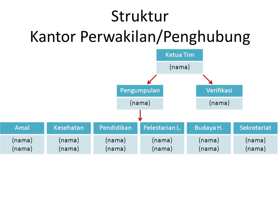 Struktur Kantor Perwakilan/Penghubung